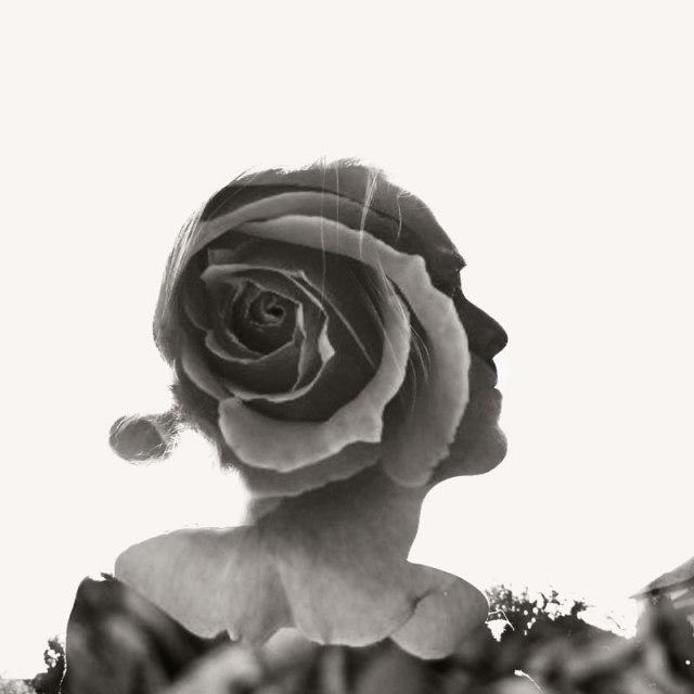 bjo_flower