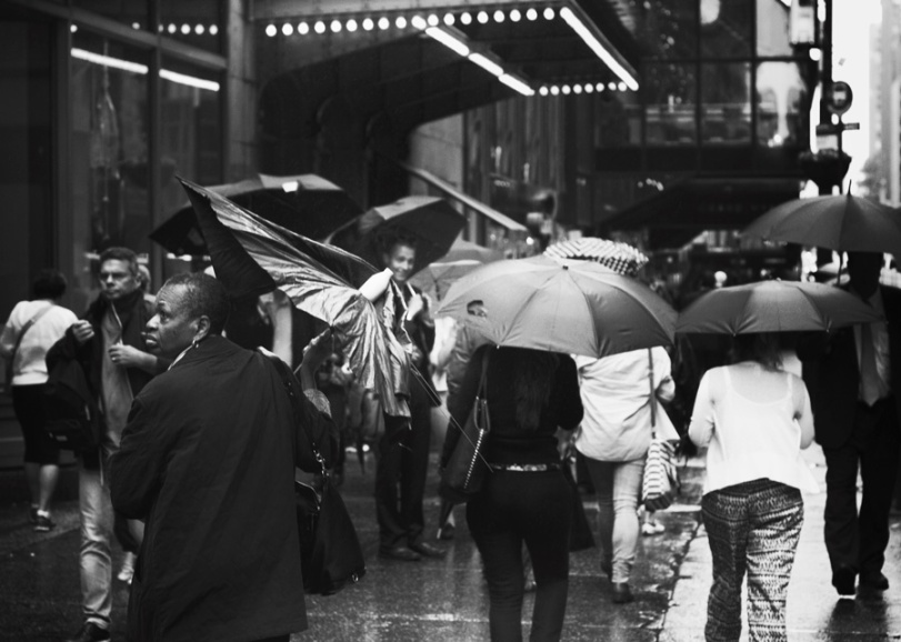 umbrella_w