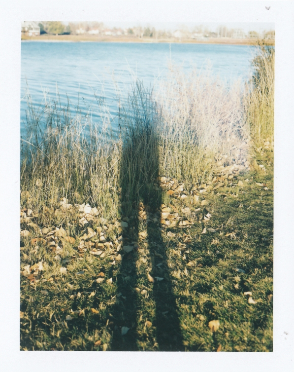 self_bjo_polaroid